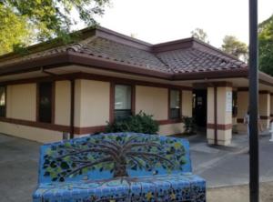 """Tree of Life"" mosaic bench outside the Davis Senior Canter"